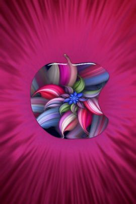 Apple Flower Burst