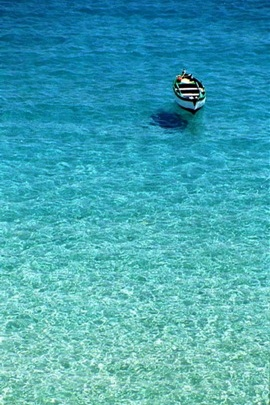 Paraadise Sea