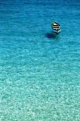 Paraadise Denizi