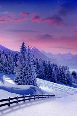 हिवाळी लँडस्केप