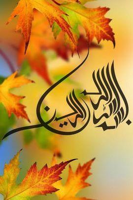 이슬람 서예