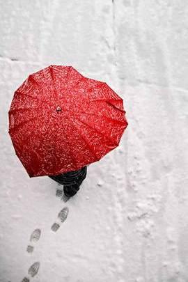 Umbrellaheart