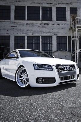 Białe Audi