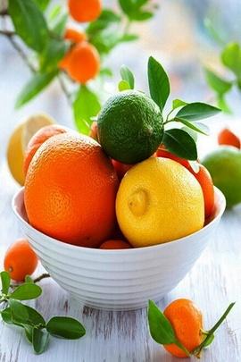 Bahar Meyveleri