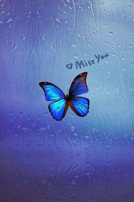 Missyou