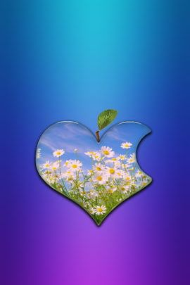 Daisy Heart Apple Logo