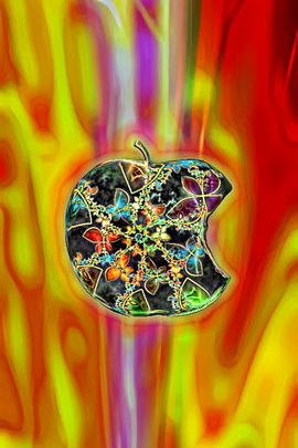 Jeweled Red Apple