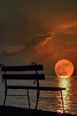 Alone Full Moon