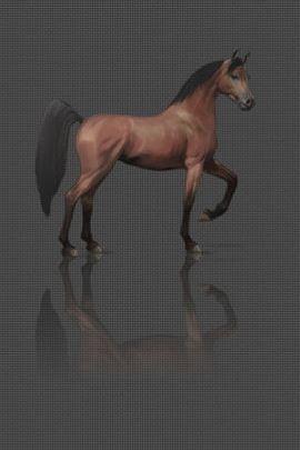 Carbon Horse 1