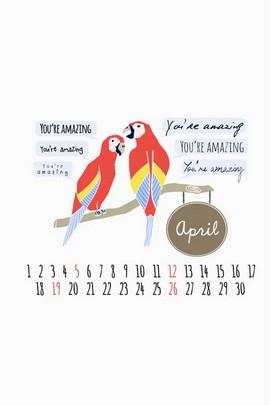 Апрельские ары Думают, что вы изумительны
