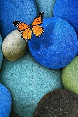 Colorful Cobblestone