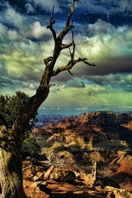 المناظر الطبيعية الرومانسية