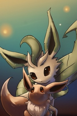 Eeve And Leafeon