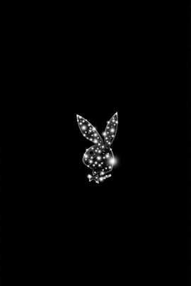 Playboy Logo Sparkle