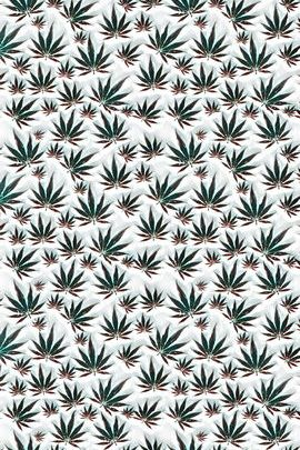 Embossed Marijuana Leaves