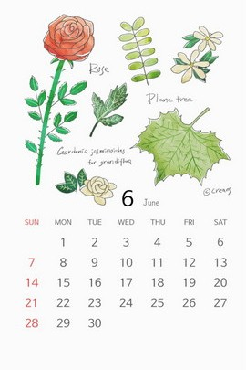 Plants Of The Months