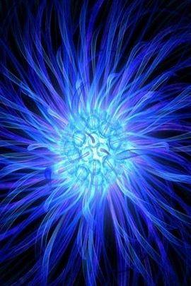 Orbe d'anémone bleue
