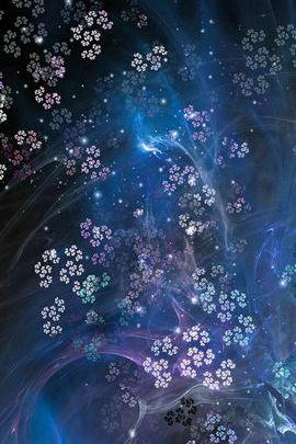 Bunga Cosmic 01