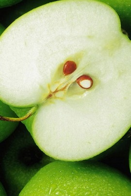 Beautiful Green Apple