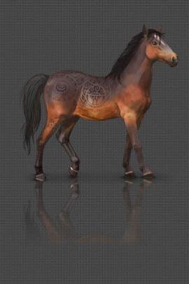 Kuda Karbon 2