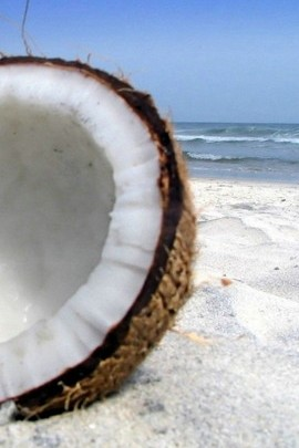 Fresh Coconut And Beach