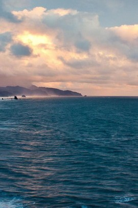 Evening Ocean