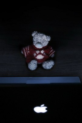 Mr. Bear With The Mac Book