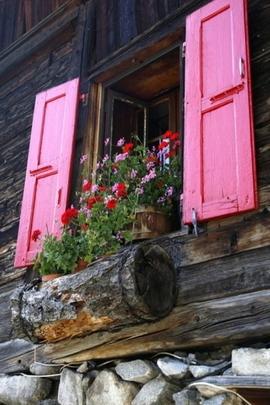 نافذة الوردي
