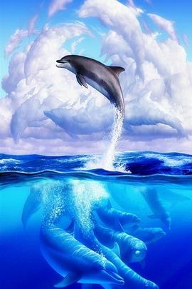 Kehidupan laut