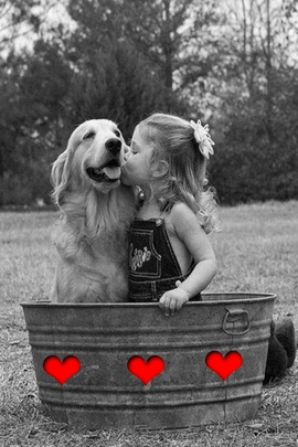 순수한 사랑