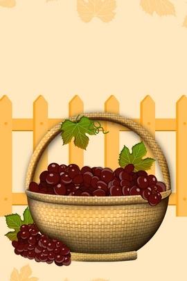 Grape Bask