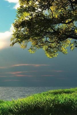 Sky Sea view