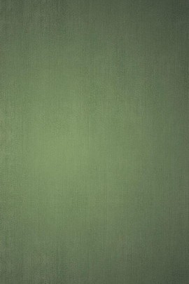 Dull Green Background