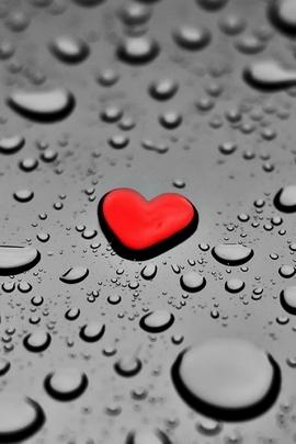 Fond Amour Couple Et Coeur (26)