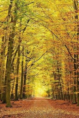 Nature Et Decouverte (51)