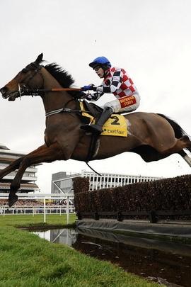 Jockey Horse Obstacle Race 25995 720x1280