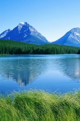 नीला पर्वत