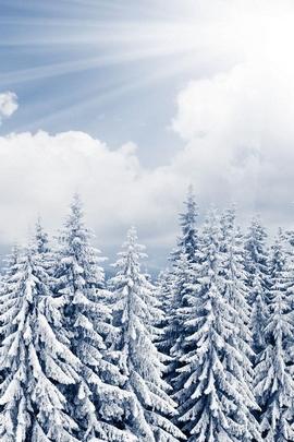 Snow Coer