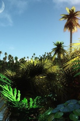 Heißer Jungle Day