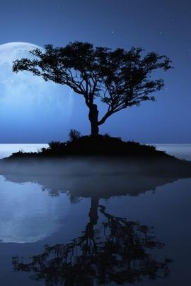 लकड़ी का चंद्रमा