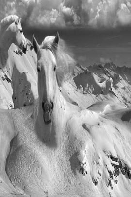 At Dağı