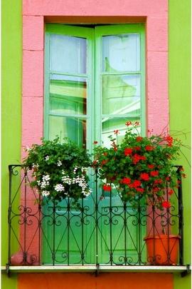 Sevimli pencere