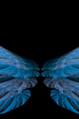 Blue Black Wings White Bright 238 720x1280