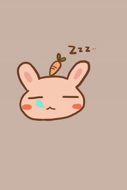 Tidur Bunny