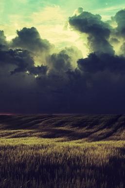 ก่อนพายุ