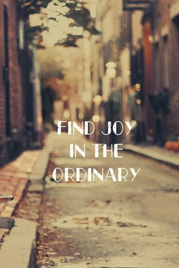 Joy In Ordinary