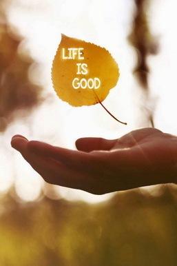 Życie jest dobre