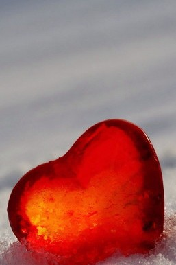 Jelly Heart