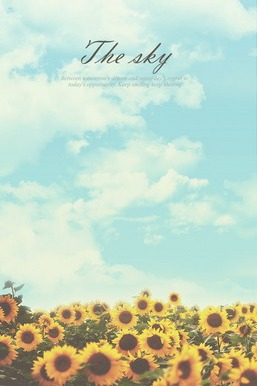 Sunflower Sky Keep Shining