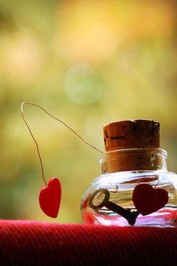 Bir kavanozda aşk